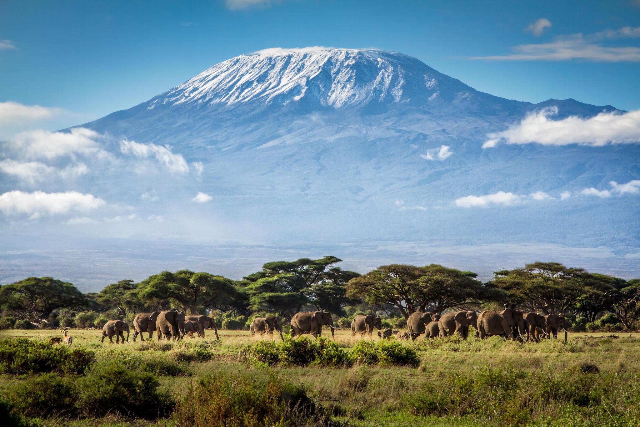 Kilimanjaro Àfrica