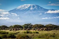 Kilimanjaro Àfrica1