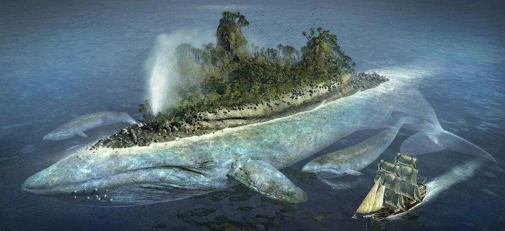 Illes vivents
